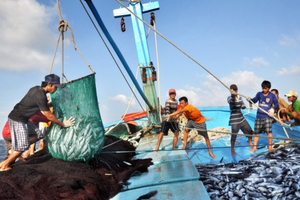 Việt Nam và Ai Cập nên đẩy mạnh hợp tác kinh tế biển và du lịch