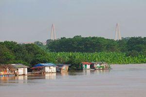 Sông Hồng mùa nước nổi hôm nay