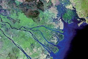 Nhiều chính sách phát triển bền vững đồng bằng sông Cửu Long
