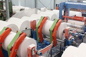 Sản xuất bột giấy tái chế: Lợi bất cập hại