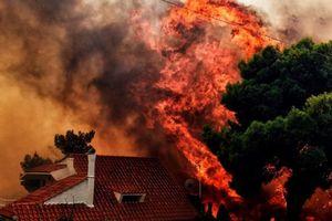 Cháy rừng ở Hy Lạp: Số người thương vong tăng mạnh