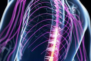 Thuốc mới giúp người liệt do tổn thương tủy sống có thể đi lại được