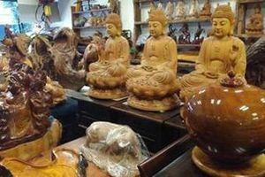 Tội phạm đốn lậu gỗ quý hiếm ở Đài Loan