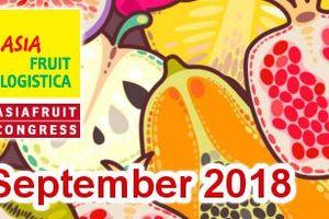 Hà Nội xúc tiến thương mại tại 'Hội chợ rau quả Asia Fruit Logistica 2018'