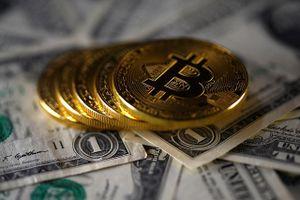 Thiếu khung pháp lý, nhà đầu tư 'sập bẫy' tiền ảo