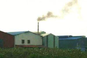 Nhà xưởng 'mọc' trái phép trên đất NN ở Dương Liễu: Cần xử lý nghiêm!