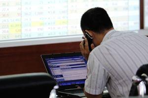 Chiến tranh thương mại có ám ảnh thị trường chứng khoán Việt Nam?