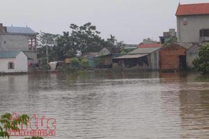 Hà Nội: Sông Bùi, sông Tích mực nước vẫn trên mức báo động III