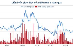 Công ty Hoàng Huy: Vì sao lợi nhuận tăng 93% lên 29 tỷ đồng?
