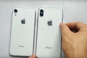 Rò rỉ hình ảnh iPhone 6,1 inch và iPhone X Plus
