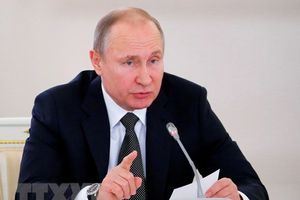 Đối thoại trực tuyến - một hình thức tiếp xúc đặc biệt của Tổng thống Nga với người dân