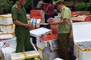 Quảng Ninh: 2.408kg rau, củ quả nhập lậu Trung Quốc bị bắt giữ, tiêu hủy