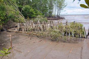 Bến Tre triển khai thí điểm các công trình phòng, chống xói lở bờ biển