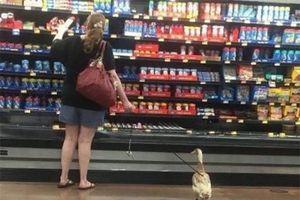 Sốc khi bắt gặp những hình ảnh lạ kỳ trong siêu thị
