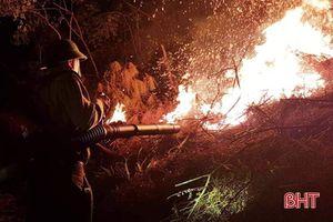 Hà Tĩnh: Cháy lớn trong đêm khiến 1,5 ha rừng keo bị thiêu rụi