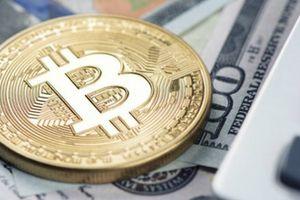 Suýt mất trăm triệu vì chiêu lừa thừa kế Bitcoin