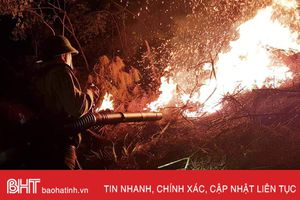 Cháy rừng trong đêm, khoảng 1,5 ha keo bị 'bà hỏa' thiêu rụi