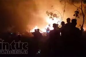 Hà Tĩnh: 'Bà hỏa' thiêu rụi hơn 1,5 ha rừng keo trong đêm