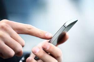 Website trường đại học phải áp dụng giải pháp hỗ trợ truy cập từ thiết bị di động