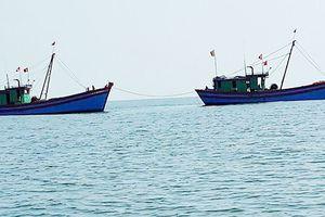 Để tàu cá vi phạm vùng biển nước ngoài, lãnh đạo thị xã La Gi bị kiểm điểm