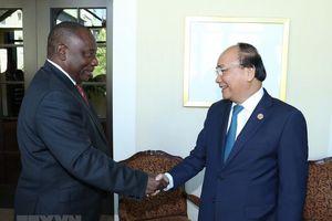 Thúc đẩy hợp tác nhiều mặt giữa Việt Nam - Nam Phi
