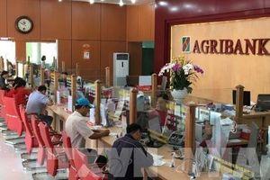Cổ phần hóa Agribank: Chậm để tiến xa