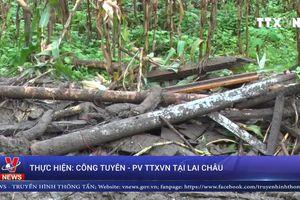 Nỗ lực tìm kiếm nạn nhân mất tích do sạt lở đất tại Phong Thổ, Lai Châu