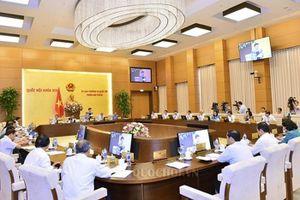 Ủy ban Thường vụ Quốc hội chưa xem xét dự án Luật Đặc khu
