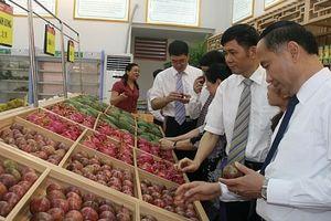 Quảng bá nông sản Sơn La: Thúc đẩy xuất khẩu chính ngạch