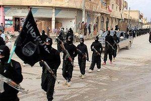 IS tiếp tục bắt cóc và hành quyết con tin tại Syria