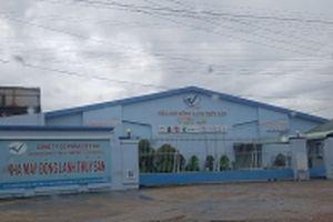 Người nuôi cá tra ở An Giang khó khăn vì doanh nghiệp thủy sản vỡ nợ