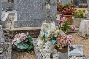Tội ác bị che giấu suốt 31 năm của cặp vợ chồng giết con rồi vứt xác bên đường