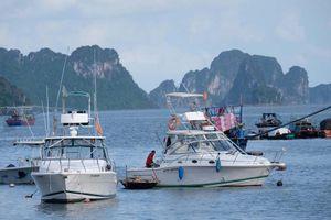 Bỏ ngỏ kiểm soát du thuyền tiền tỉ ở vịnh Hạ Long