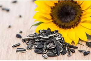 5 công thức dưỡng trắng da, ngăn lão hóa với các loại hạt