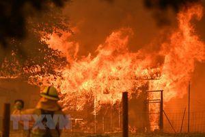 Mỹ: 'Giặc lửa' hoành hành tại bang California, gây thiệt hại lớn
