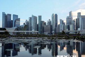 Singapore nghi ngờ chính phủ nước ngoài đứng sau vụ tấn công mạng