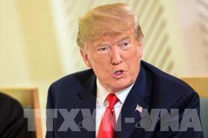 Tổng thống Mỹ nói việc con trai gặp nữ luật sư người Nga là hợp pháp