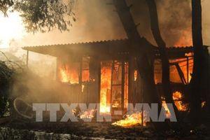 Hy Lạp cách chức người đứng đầu lực lượng PCCC và cảnh sát sau thảm họa cháy rừng