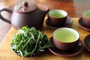 Loại trà đắt như vàng ròng giúp thôn nữ thu bạc tỷ