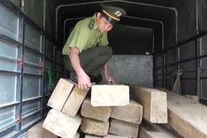 Hà Giang: Quản lý bảo vệ rừng còn nhiều khó khăn