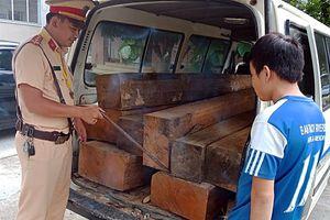 Bắt giữ xe vận chuyển gỗ lậu