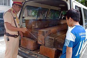 Quảng Nam: Tài xế vận chuyển gỗ lậu lại không có giấy phép lái xe