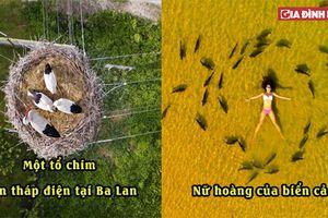 18 bức ảnh chụp từ trên không ngoạn mục nhất thế giới, Việt Nam được vinh danh trên tạp chí nước ngoài