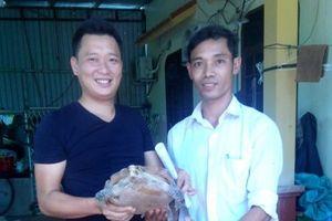 Quảng Bình: Cứu hộ 01 cá thể rùa núi viền thuộc nhóm nguy cấp, quý hiếm