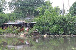 TP.HCM: Người dân sống ven rạch Cầu Sơn, sông Bình Triệu khốn khổ vì ô nhiễm nặng