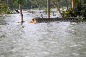 Vùng ngập lụt Chương Mỹ cần số tiền 'khủng' để người dân 'sống chung với lũ'