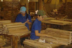 Chế biến gỗ và lâm sản sẽ là ngành kinh tế chủ lực