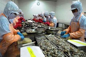 Xuất khẩu thủy sản vào Hoa Kỳ cần chuẩn bị ứng phó với các quy định mới