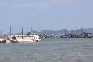 Dừng hoạt động 20 tàu du lịch trên vịnh Hạ Long