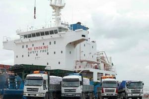 PVCFC nhập khẩu 22.000 tấn Kali đáp ứng nhu cầu vụ Đông Xuân